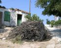Wood for the kiln